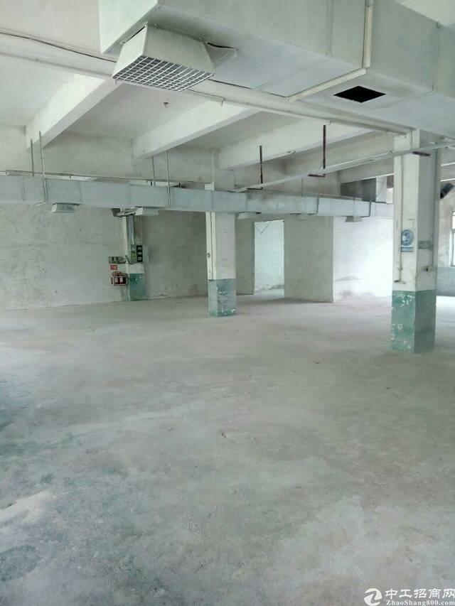 坪山石井三楼1200平,大小可分租。