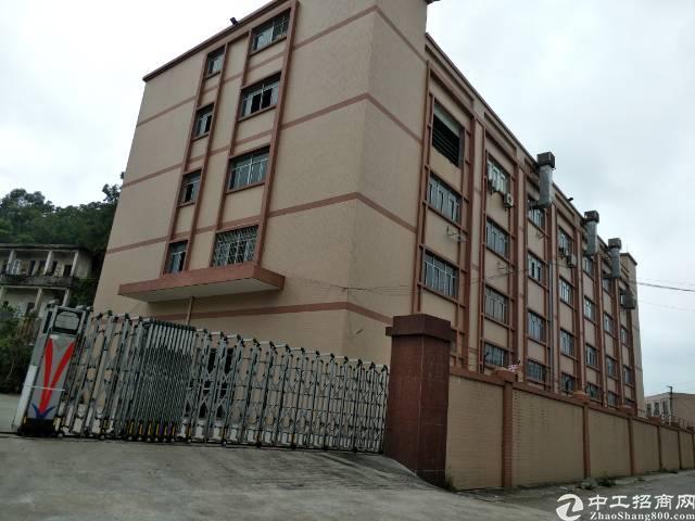 茶山新出独门独院标准厂房6000平方现成水电装修