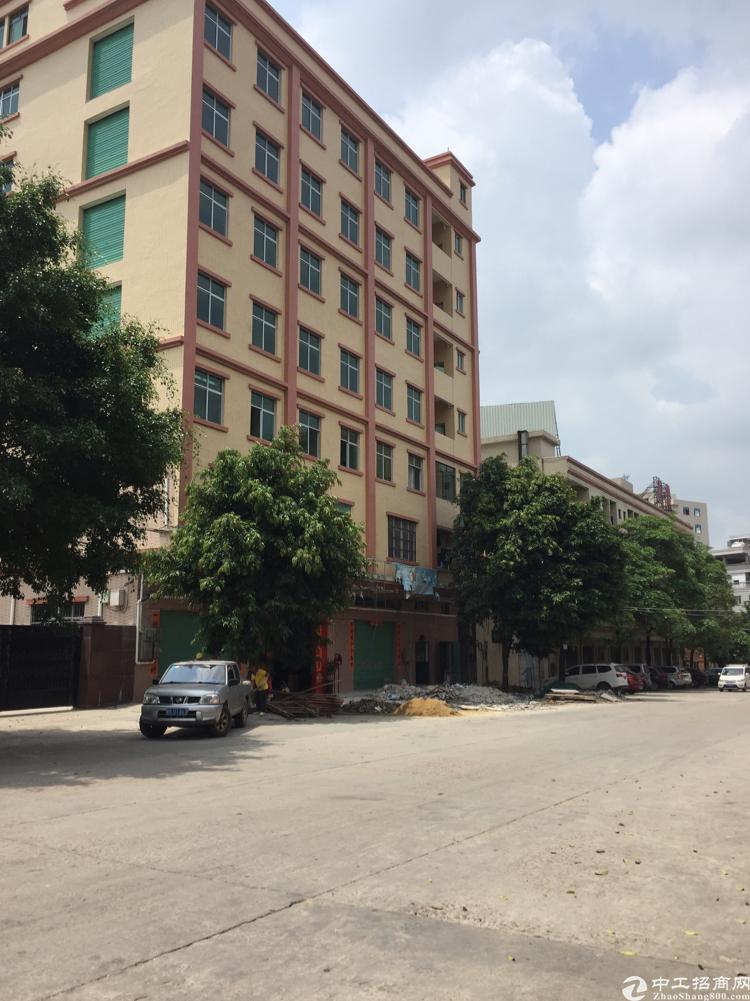 毛织市场附近独栋厂房每层400平米,租10元