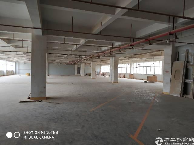 清溪新出标准楼上1500平,带办公精装修,