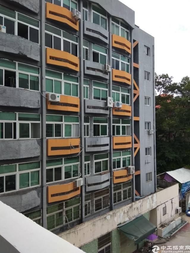 龙华民治工业区附近200平办公厂房出租