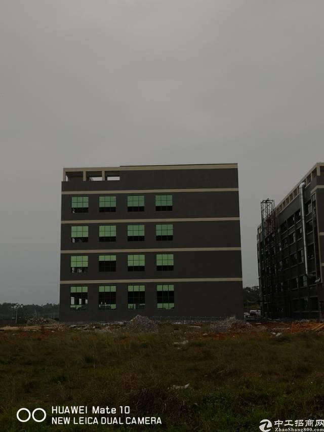 全新大型工业区厂房招租