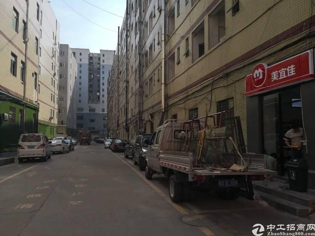 园区环境优美停车位多货车进出方便