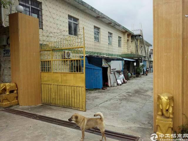 原房东带红本独门独院2500平,价格12,宿舍500