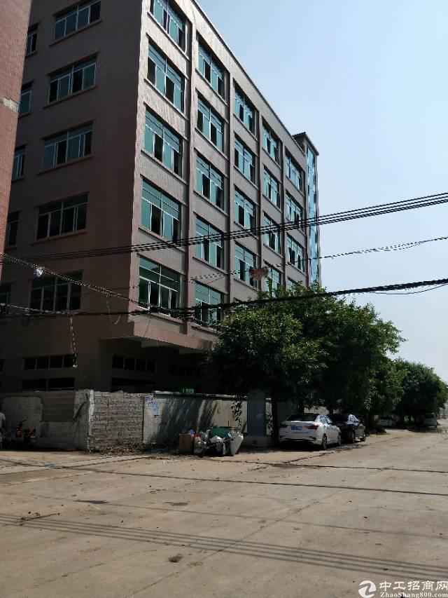 企石镇原房东独栋标准厂房1-6层6000平方