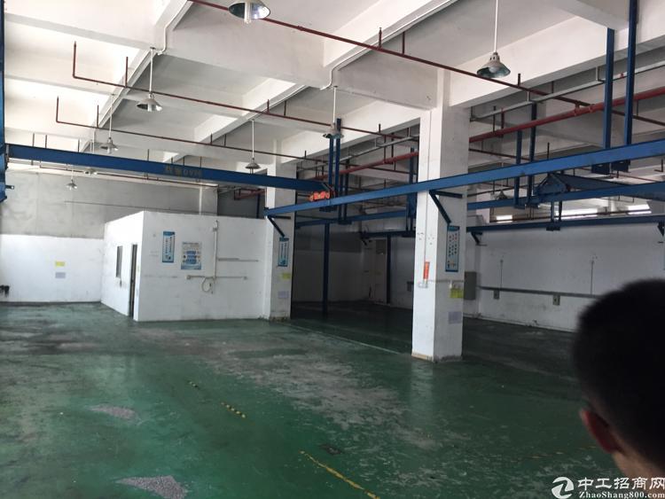 福永和平新出一楼1100平方带航车厂房出租