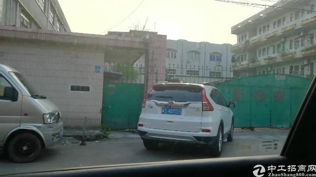 茶山镇新出独院11000火爆出租