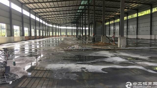 新建钢构4500平方独院出租