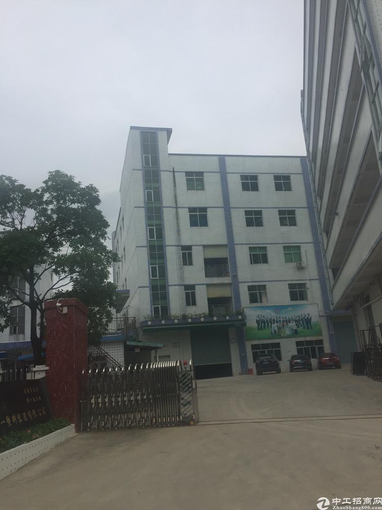 石碣镇10500平方国有厂房出售