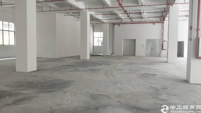 石排镇全新标准厂房内观精致优雅外观美丽有意者随时咨询