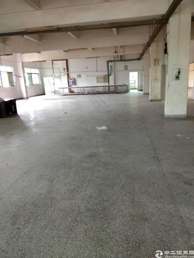石碣镇新出厂房800平米,带电梯。