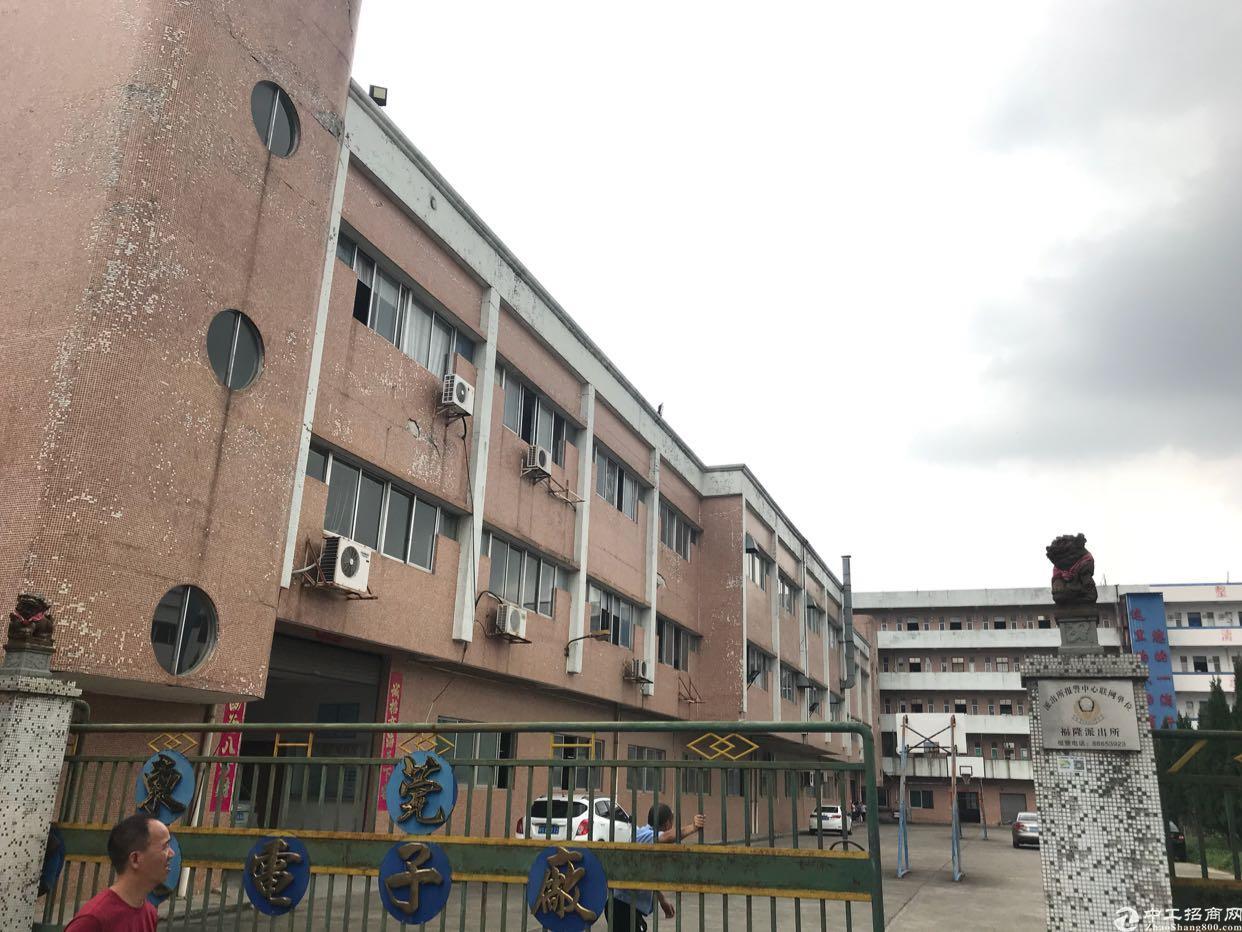 石碣镇中心城区一楼1800