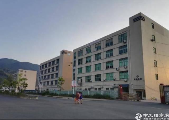 坪山区石井工业区新出3楼整层900平出租