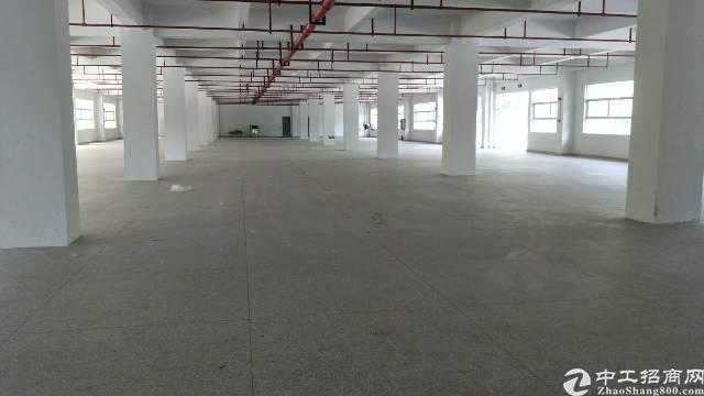 平湖辅城坳工业区新出二楼2450平带消防喷淋