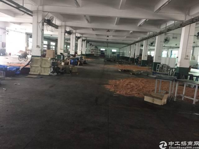 坪山 大工业区标准独院厂房12000平招租