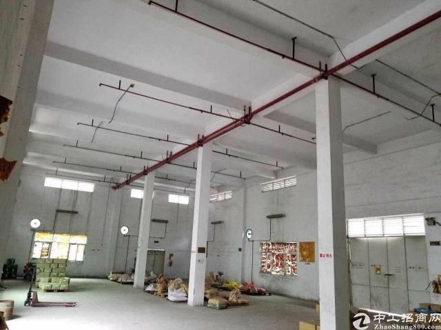 公明龙大高速出口楼村新出一楼厂房单一层空地10000平方