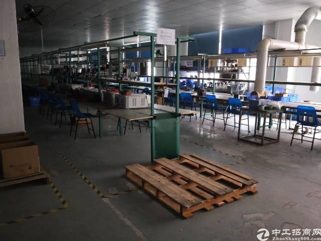 龙华大浪原业主厂房带精装修1400平-图5