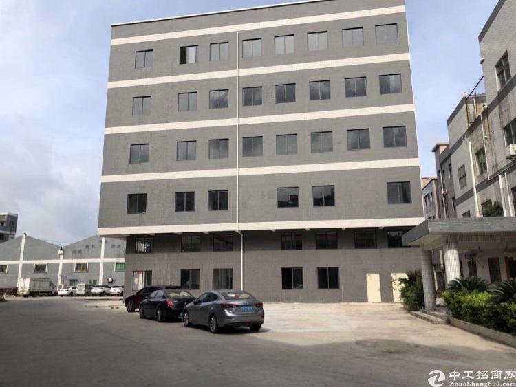 大岭山工业园全新厂房出租滴水7米适合各种行业