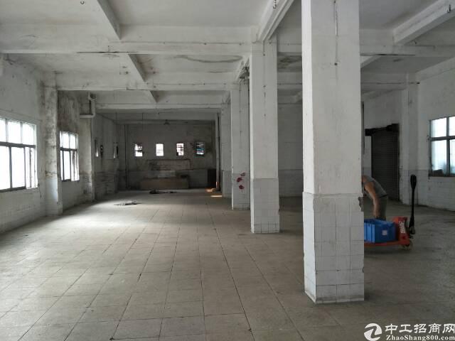 石碣新出标准厂房三楼。