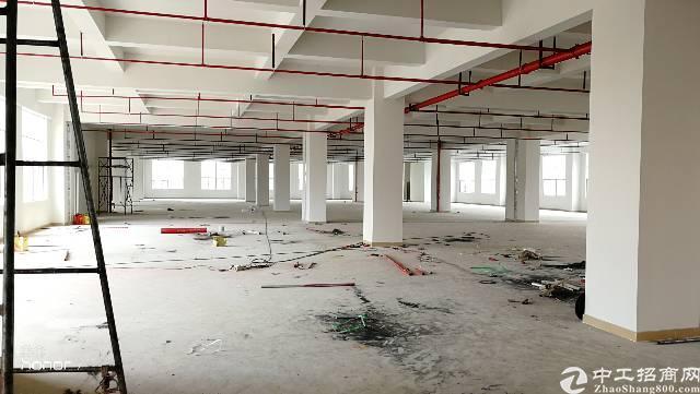 乌沙全新厂房一楼一万方火爆招租