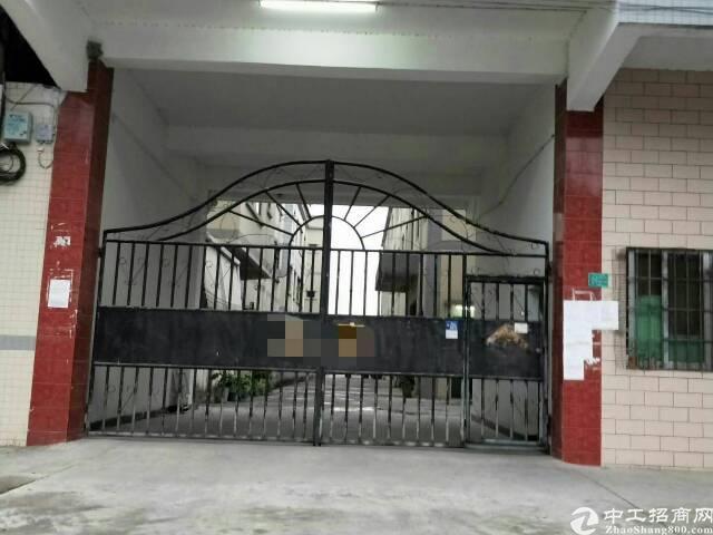 省道边上原房东9成新独院标准厂房带现成水电线路低价出租