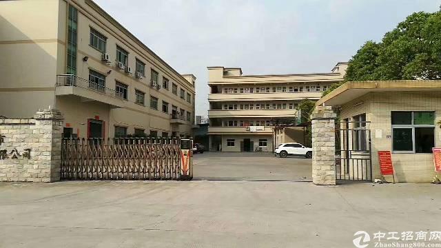 虎门镇大宁村靠近长安实业客分租一楼实际面积600平