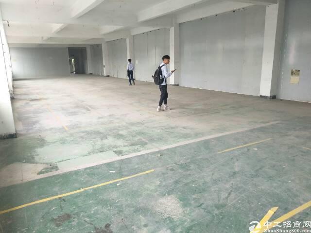 福永凤凰新出精装厂房带大货梯厂房出租