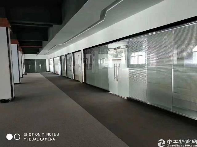 公明玉律原房东独门独院红本厂房8000平米招租-图5