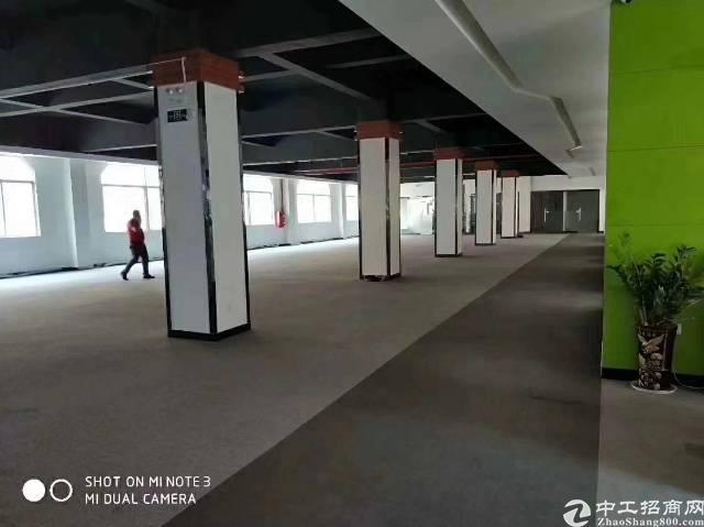 公明玉律原房东独门独院红本厂房8000平米招租-图3