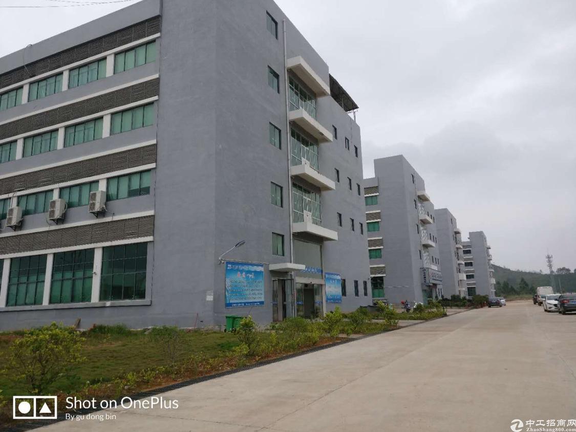 50000平原房东,地铁口独门独院,五栋厂房,两栋宿舍。