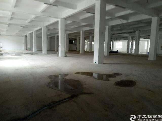 广州新塘独门独院8000平方厂房