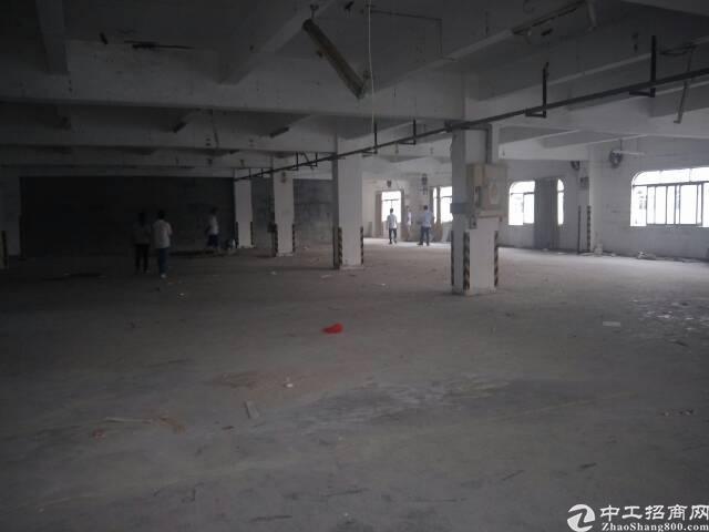 石碣新出标准厂房二楼。