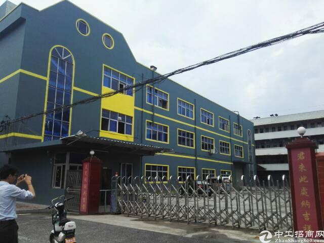 横沥镇最新靓盘独门独院标准厂房