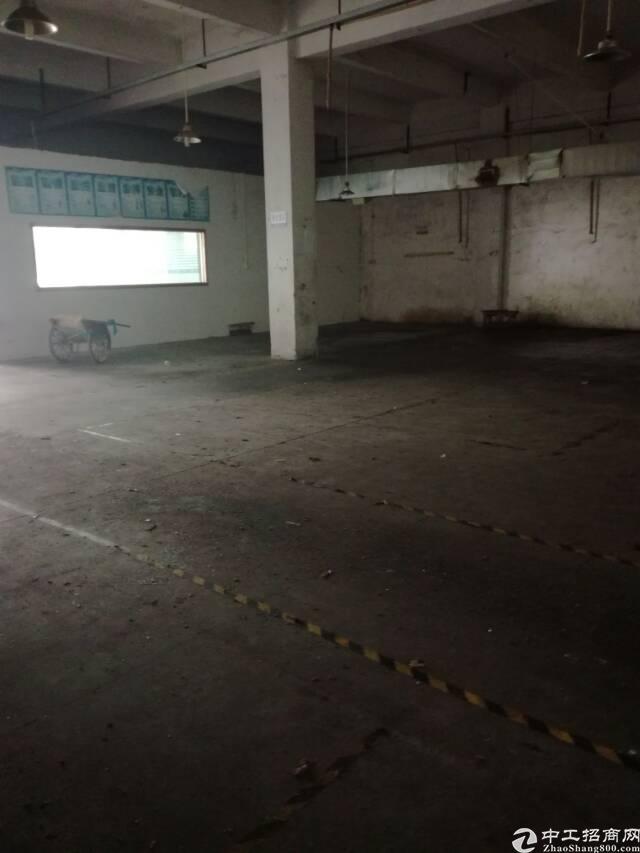 虎门东风一楼800平米厂房