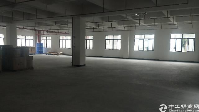 石排镇全新标准厂房 单一层 二楼 价格方面可面谈