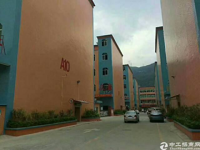 石排原房东标准独院7680平米