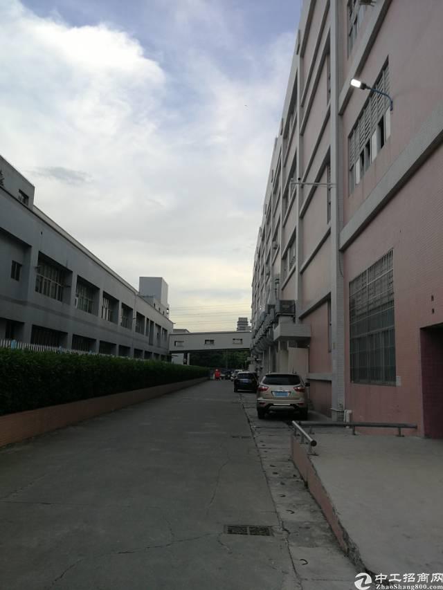 凤岗镇天堂围新出独门独院带办公室、地坪漆标准厂房3000平