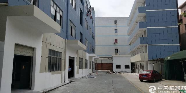 横岗安良新出独院厂房6000平全新装修现成办公室价格22块