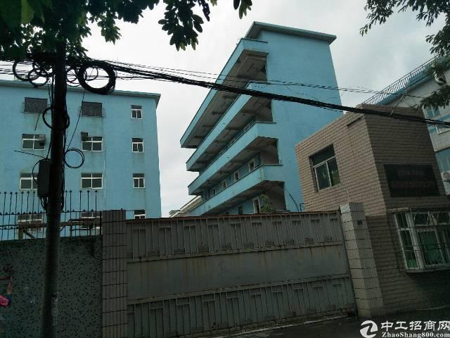 凤岗油甘埔工业园空出标准厂房楼上800平,价格十块