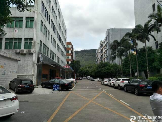 西丽留仙大道旁实用率超高写字楼出租图片4