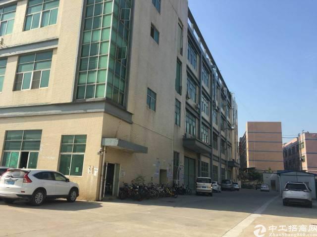 红本独门独院厂房1-4层40000平米出租可分租