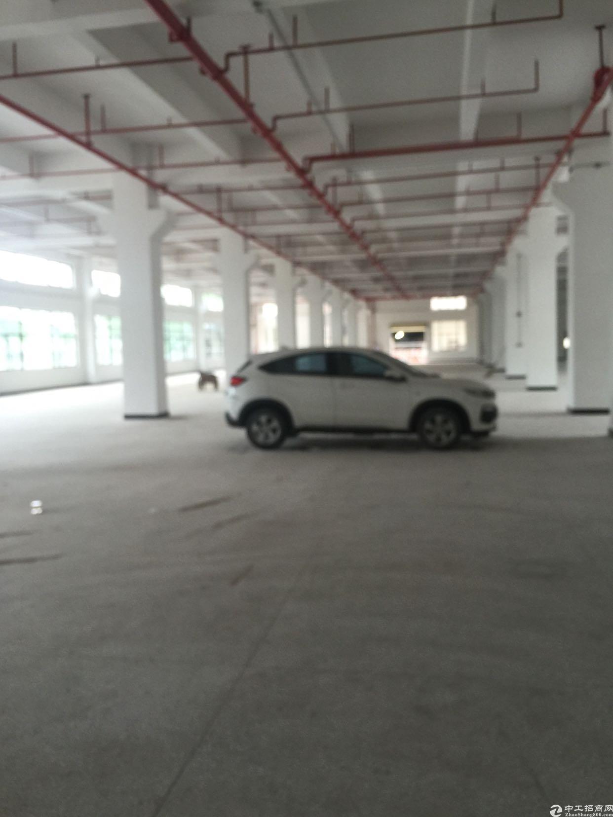 横沥新出标准厂房一楼,位置好,价格便宜