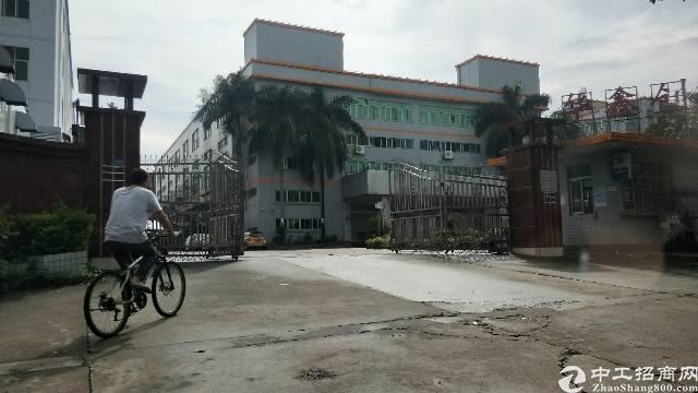 临深地区新出红本独院厂房1-4层40000平米出租