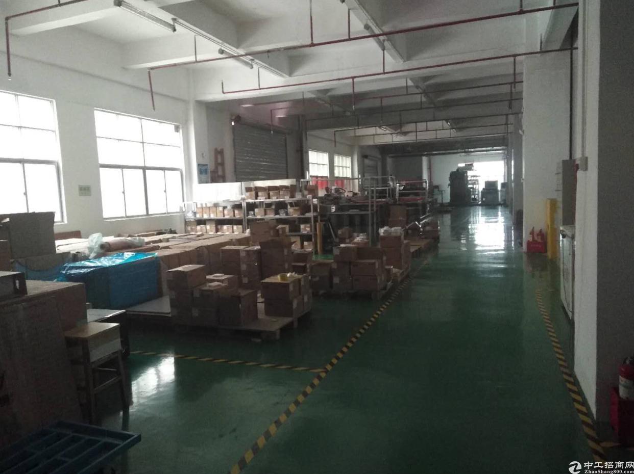 观澜桂花原房东厂房出租 带有装修 无需转让费 零公摊