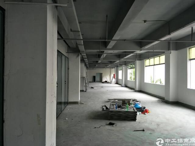 西丽留仙大道旁实用率超高写字楼出租图片5