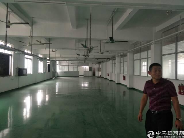 坪山主干道旁独院厂房3350平方急租-图2