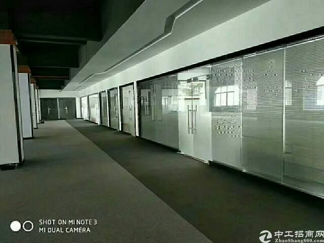 石排原房东标准独院7680平米-图4