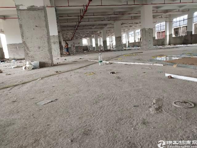 大宁全新厂房招租每层2700平