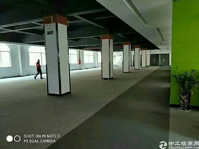 石排原房东标准独院7680平米-图3