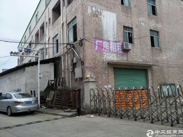 大岭山500平方带办公室和宿舍的小厂房